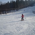 ferie zimowe 2012   (131)