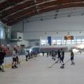 hokej (11)