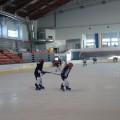 hokej (4)